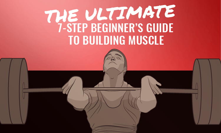 The Ultimate 7-Step Beginner's Guide To Building Muscle - FitMole